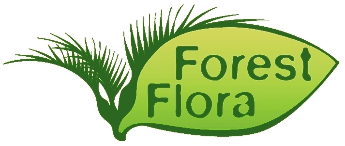 Forest Flora native plants nursery supplies ecosourced native plants for ecological restoration